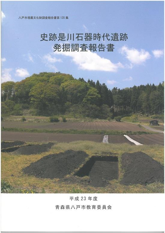 是川遺跡調査報告書